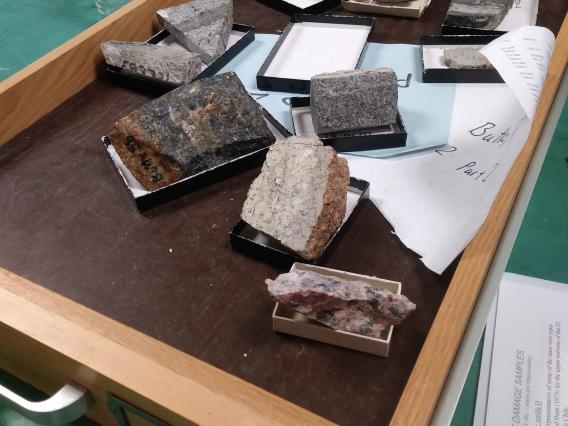 A drawer full of different samples of labeled rocks waiting to be studied by geology students.