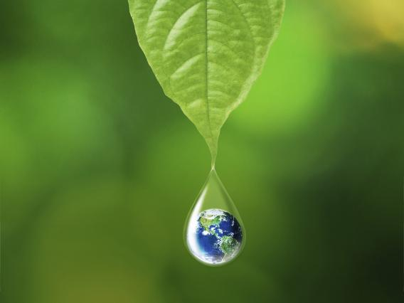 Leaf with water drop which enloses a tiny earth